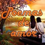 Poema de amor N° 12: Soy tu amor